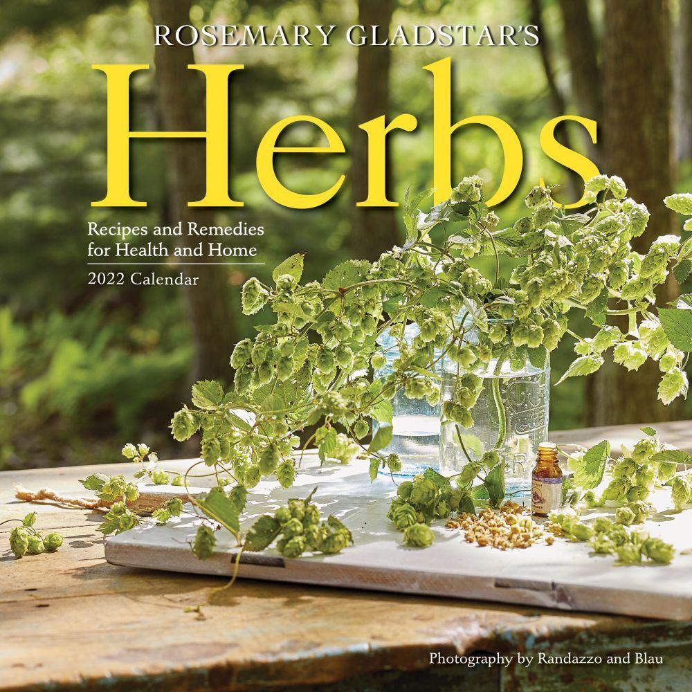 Birds 2020 Wall Calendar