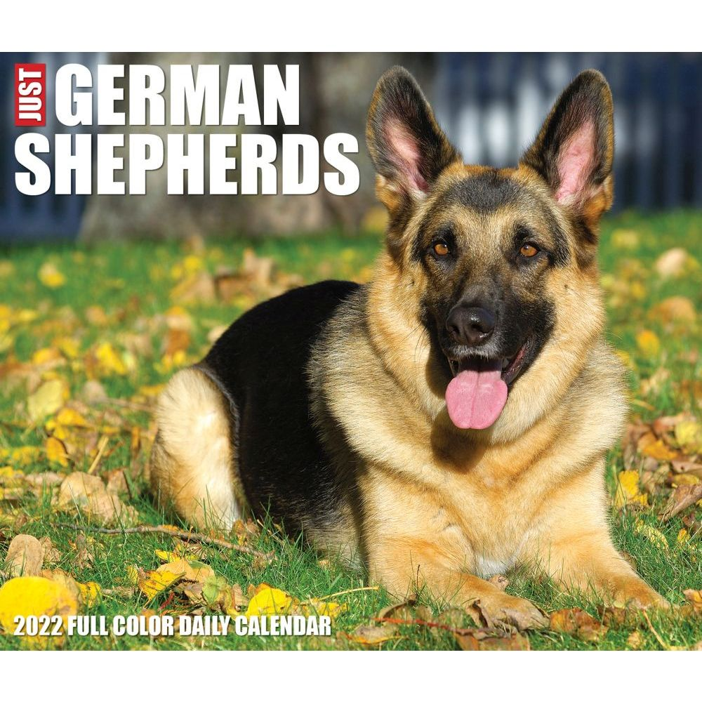 Out On The Porch 2020 Wall Calendar
