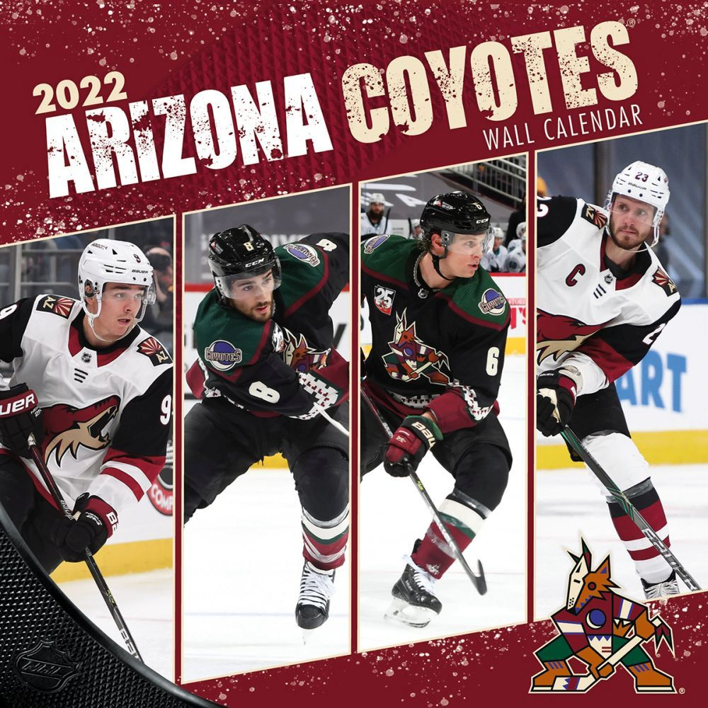 Country Churches 2020 Wall Calendar
