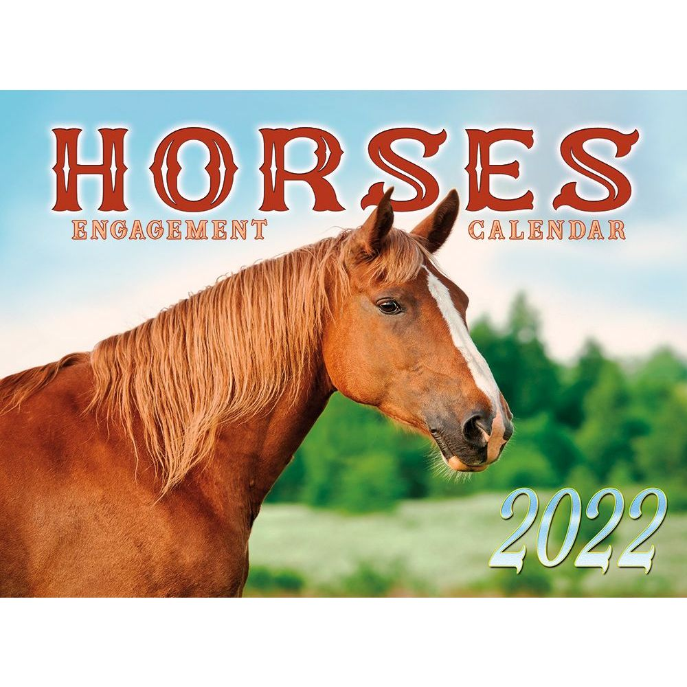 Ladybird Plan-It 2020 Monthly Planner