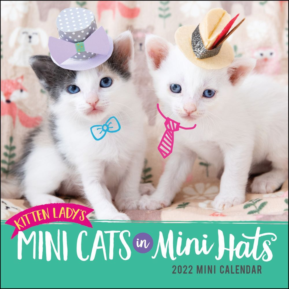 Butterflies And Dragonflies 2019 Desk Calendar