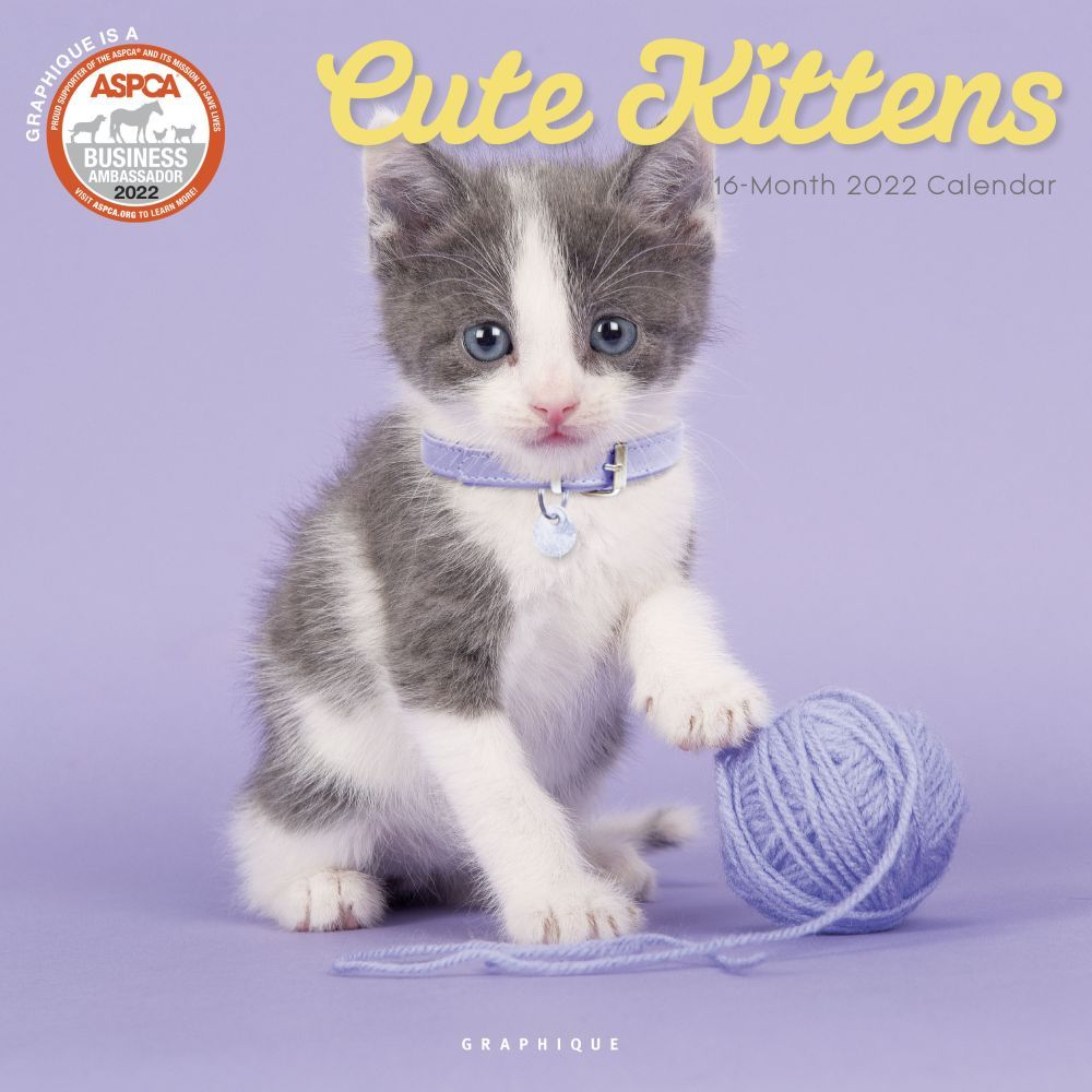 Butterfly Wings 2020 Wall Calendar