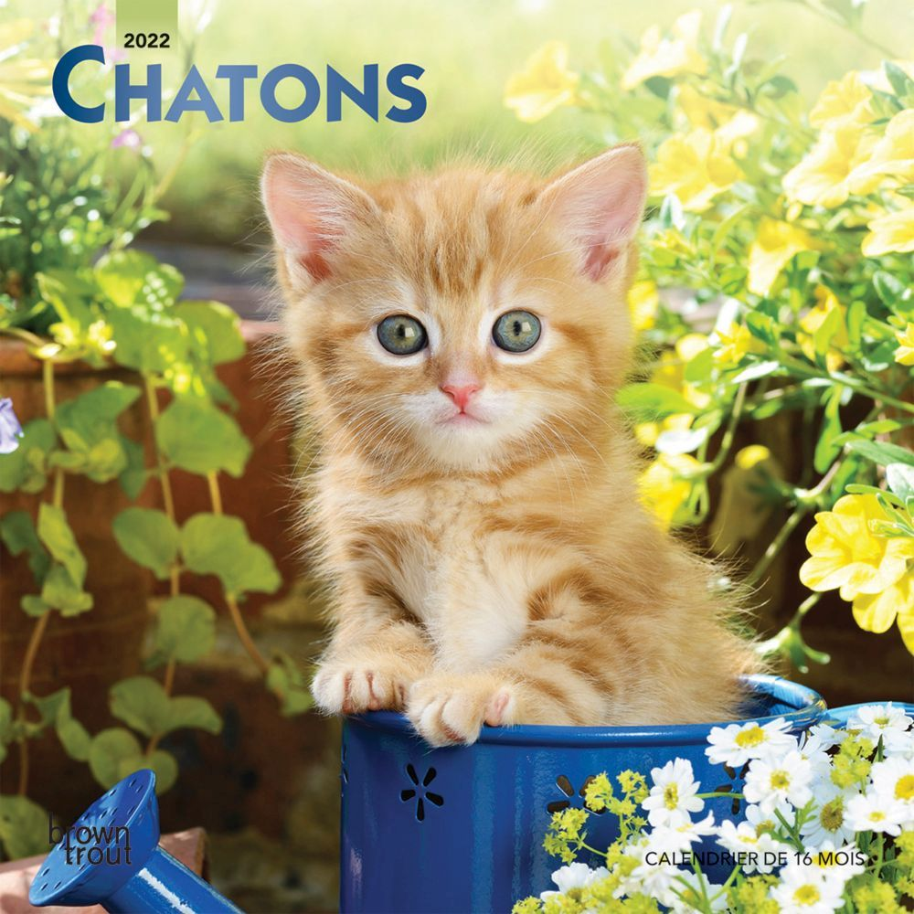 California Coast Wall Calendar
