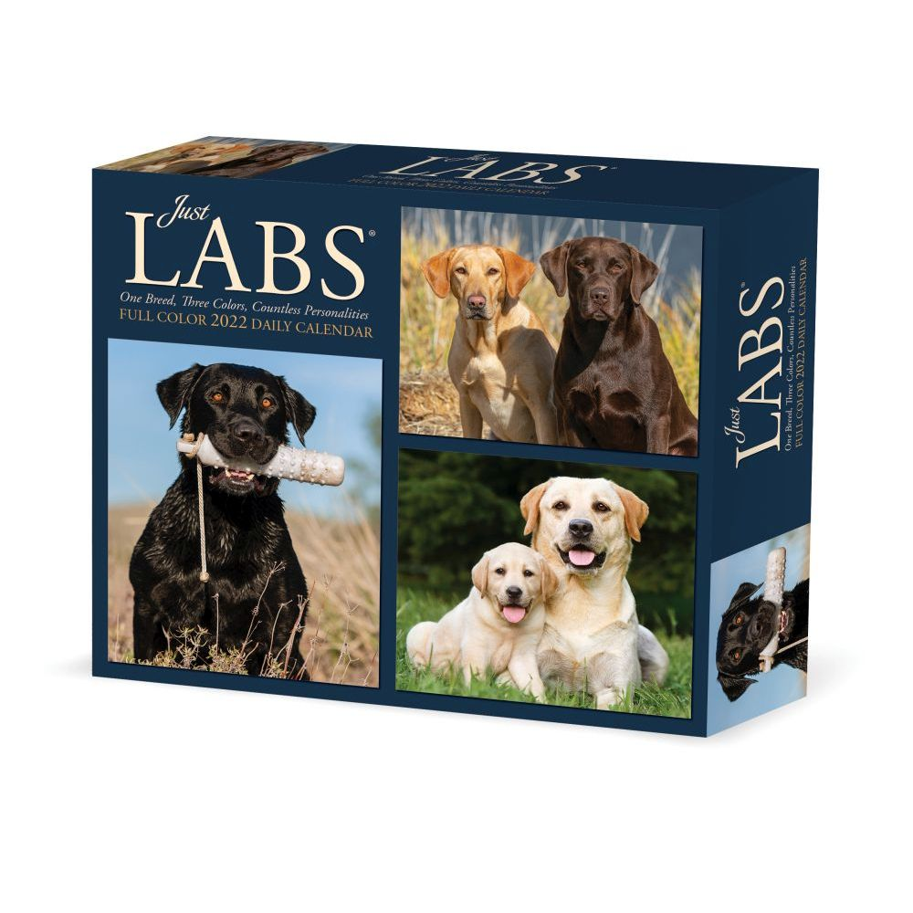 California Northern Protégé 2020 Wall Calendar