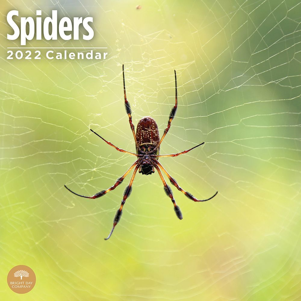 Auburn Tigers Wall Calendar
