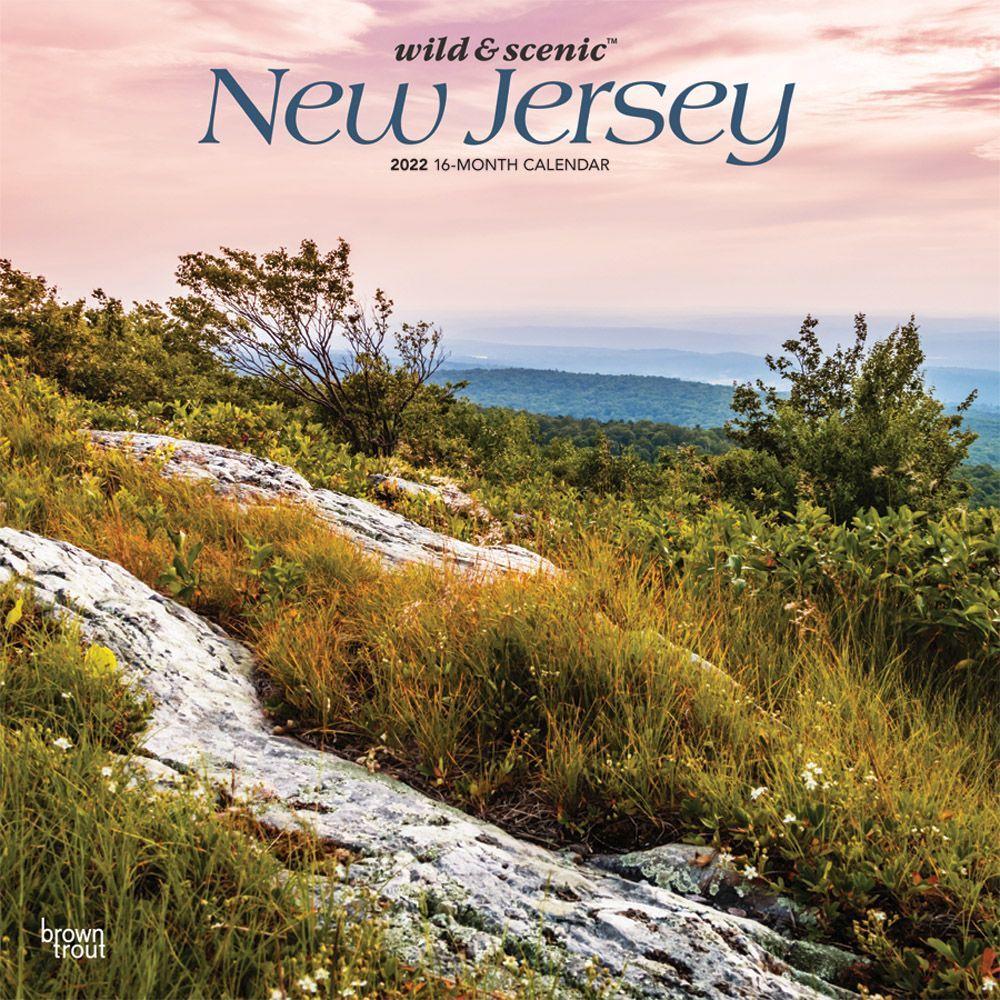 Kitten Cuddles 2022 Two Year Pocket Planner