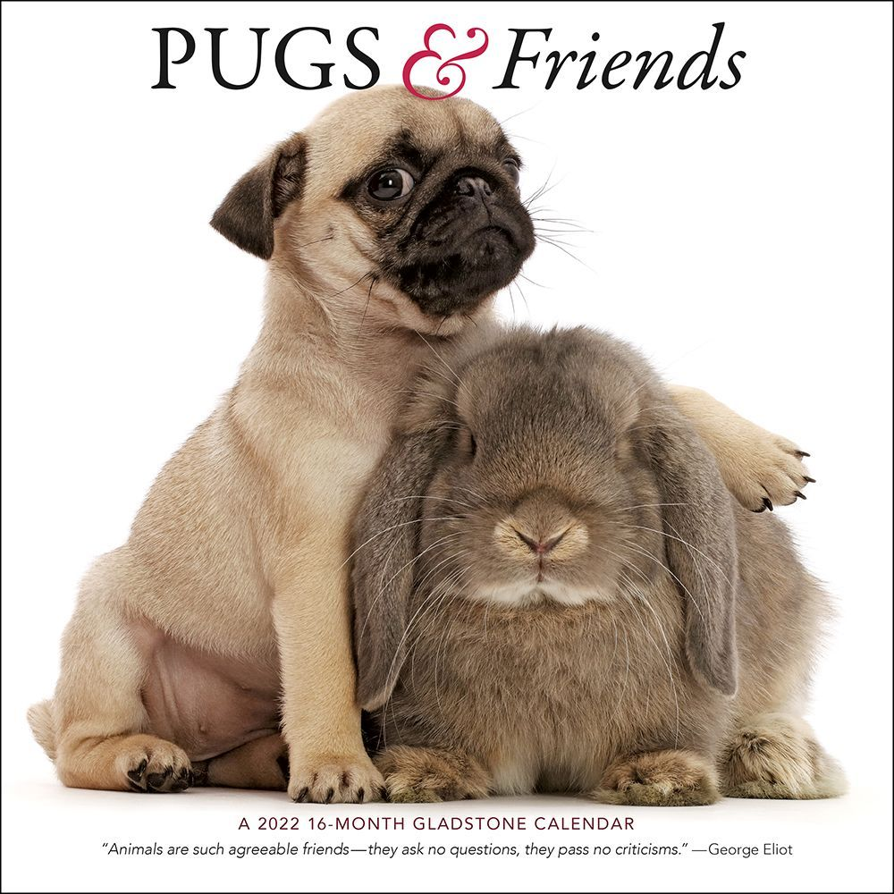 Dads Family 2019 Planner 2019 Wall Calendar