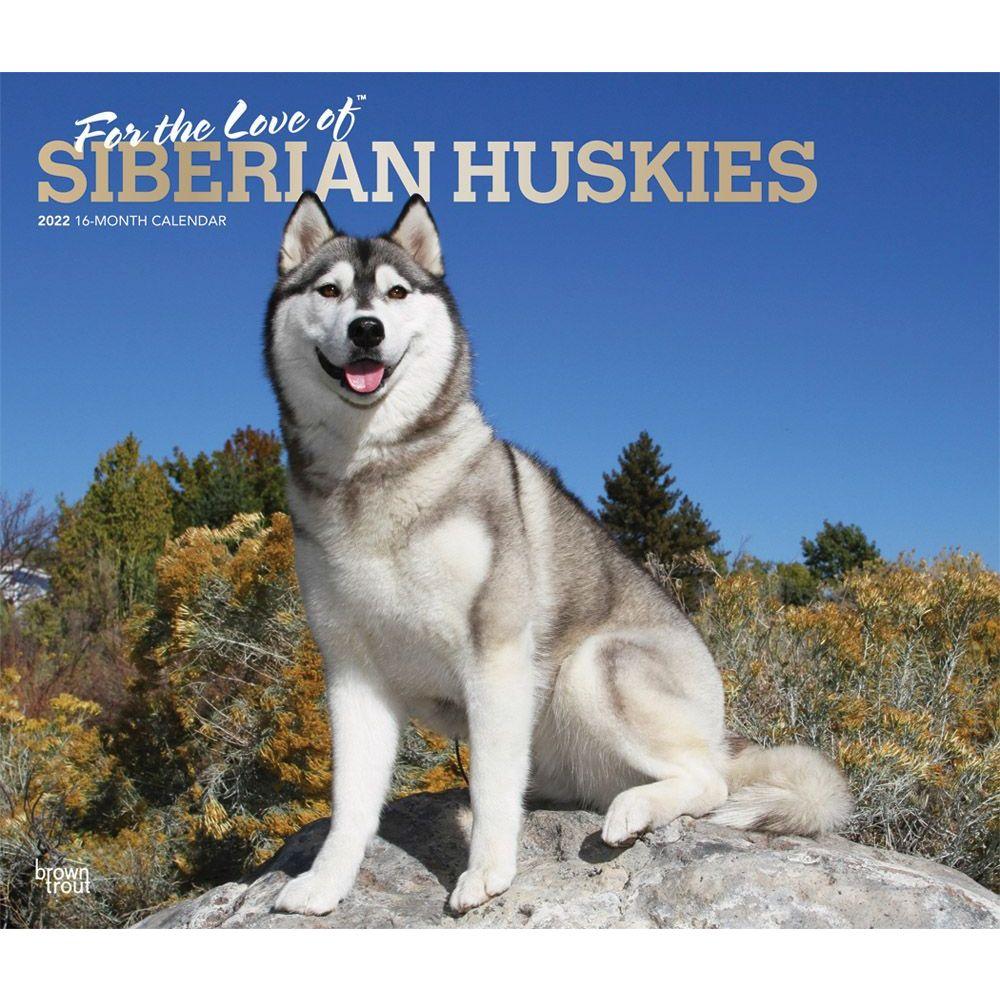 Zion National Park 2020 Wall Calendar
