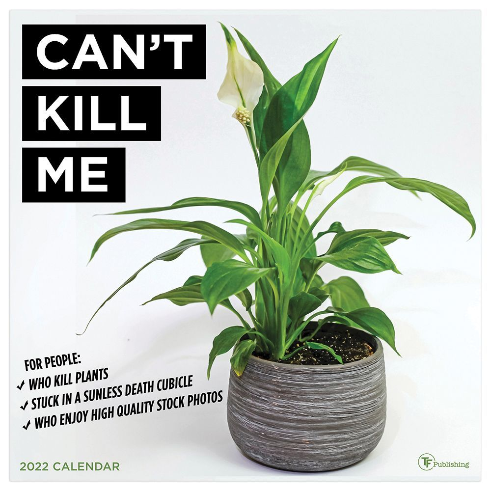 Gagnon Marie Chapdelaine Wall Calendar