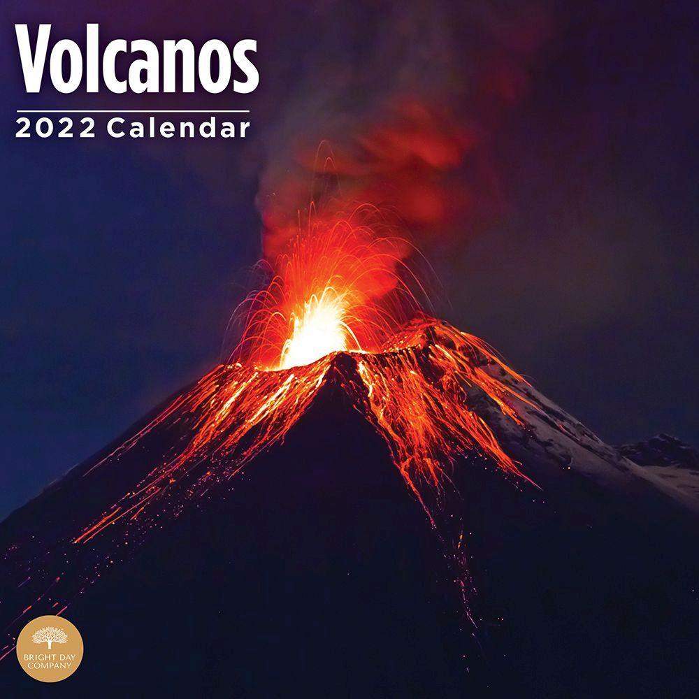 Wolves 2020 Wall Calendar
