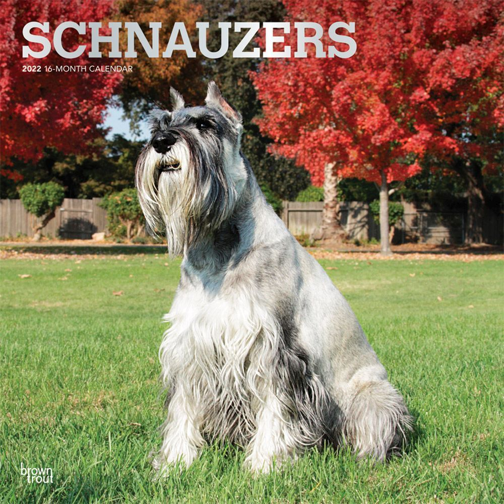 Wine Country Spec Edition 2020 Wall Calendar