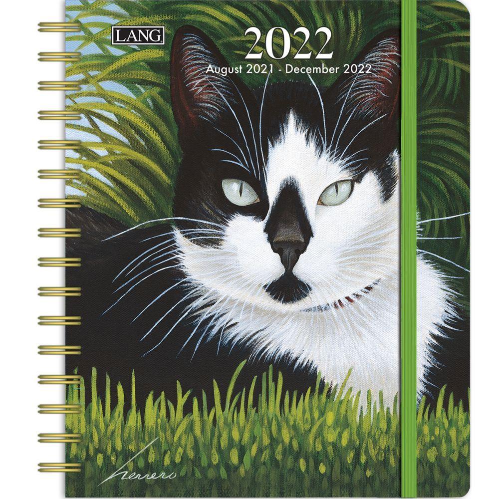 Cat Trivia 2019 Desk Calendar