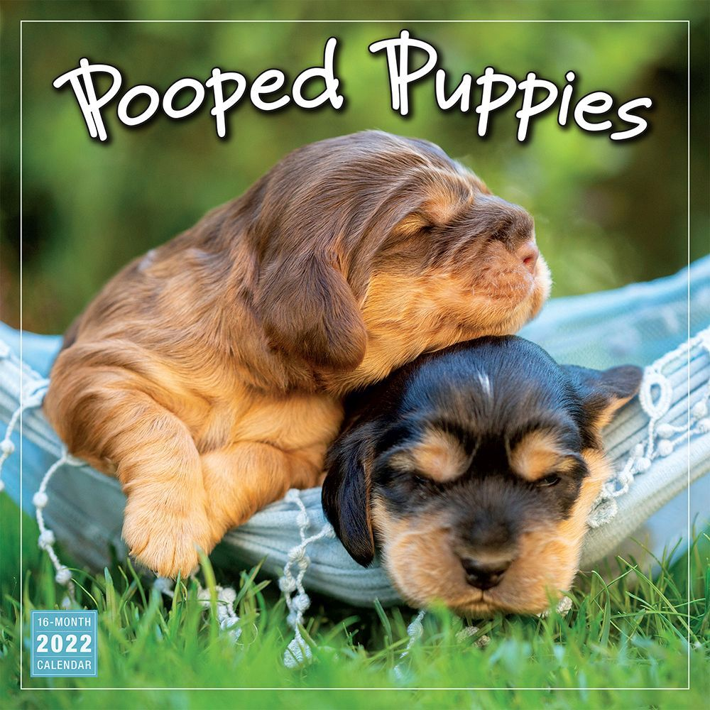 Mammoth Grid 2020 Wall Calendar